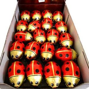 milk choc ladybirds